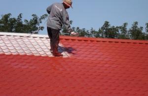Vopsea specială pentru acoperiș